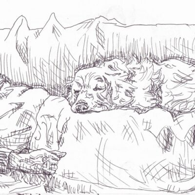 drawing of sleeping dog